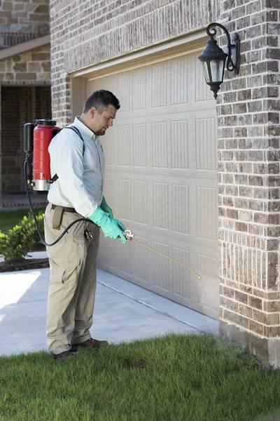 Preventative Pest Control , Plano TX